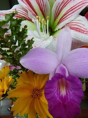 flowersmarianne.jpg