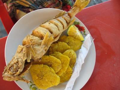 fried corvina