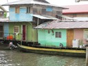 The neighborhood of Saigon Bay, Isla Colon
