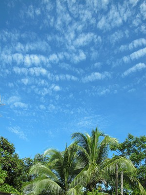 A mackerel sky