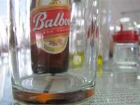 Balboa - very popular cerveza